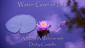 Water: Giver of Life